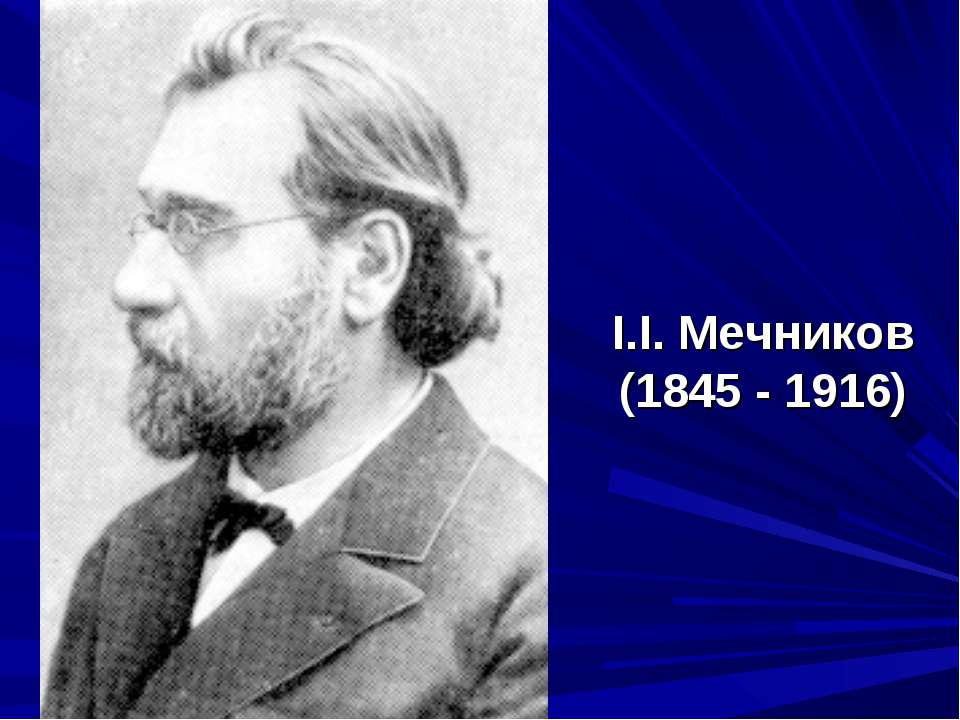 І.І. Мечников (1845 - 1916)