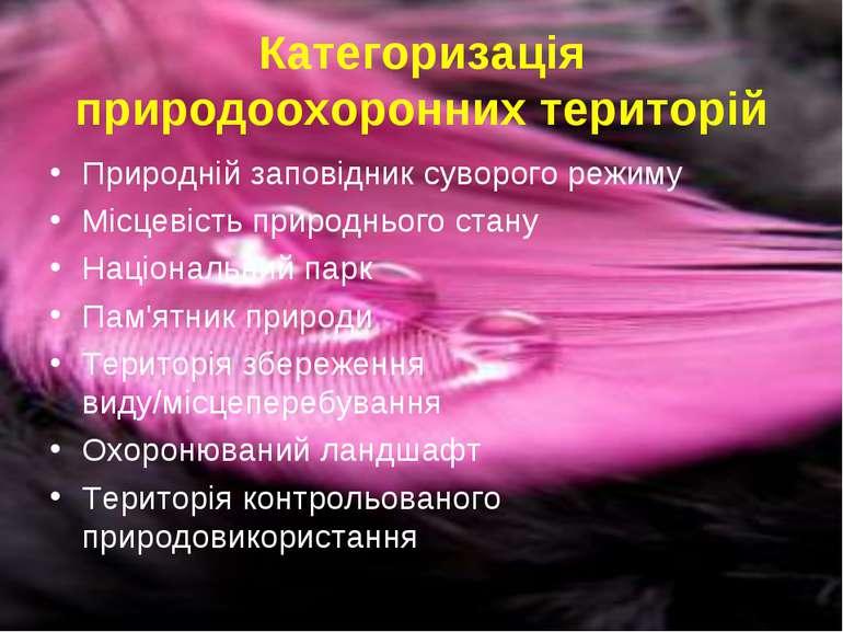 Категоризація природоохоронних територій Природній заповідник суворого режиму...