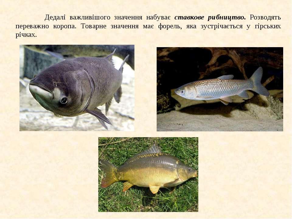 Дедалі важливішого значення набуває ставкове рибництво. Розводять переважно к...