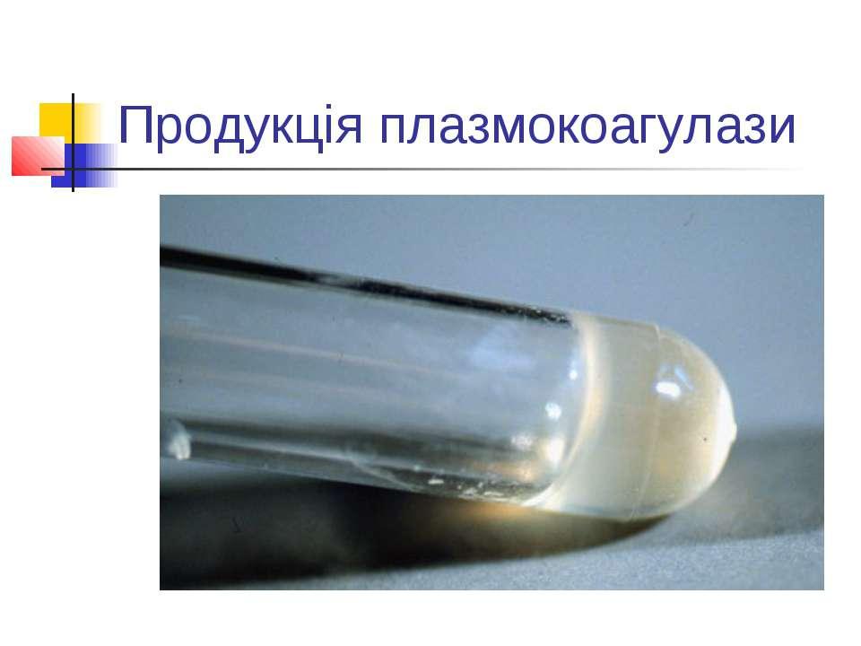 Продукція плазмокоагулази