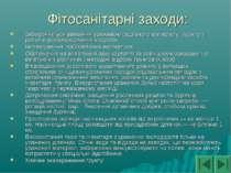Фітосанітарні заходи: Забороняється ввезення ураженою садивного матеріалу і ґ...