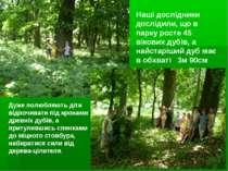 Наші дослідники дослідили, що в парку росте 45 вікових дубів, а найстаріший д...