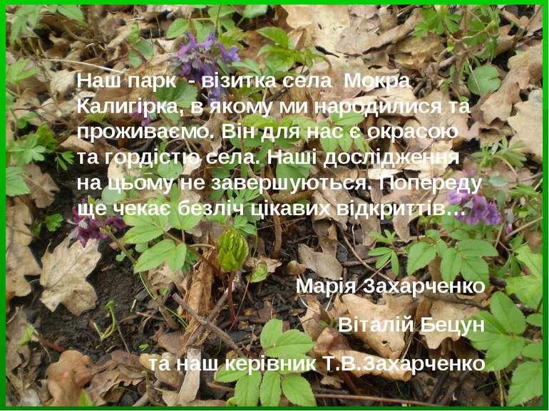 Наш парк - візитка села Мокра Калигірка, в якому ми народилися та проживаємо....
