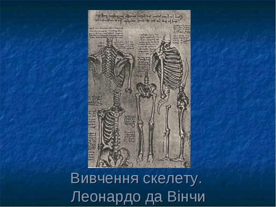 Вивчення скелету. Леонардо да Вінчи