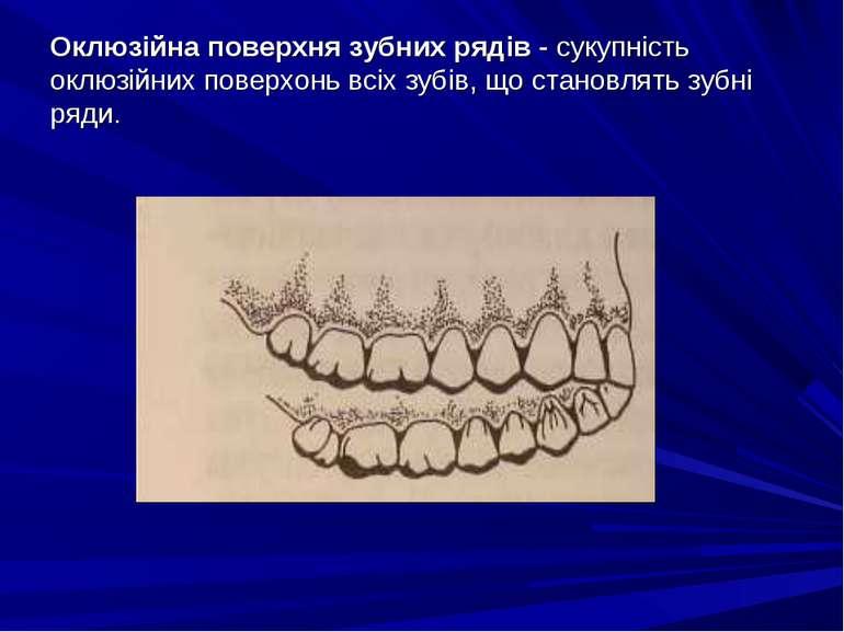 Оклюзійна поверхня зубних рядів - сукупність оклюзійних поверхонь всіх зубів,...