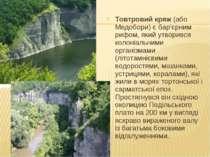 Товтровий кряж (або Медобори) є бар'єрним рифом, який утворився колоніальними...
