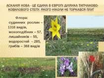 Флора: судинних рослин – 1316 видів, мохоподібних – 57, лишайників – 55, водо...