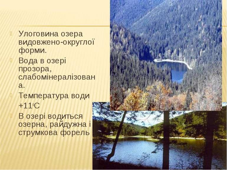 Улоговина озера видовжено-округлої форми. Вода в озері прозора, слабомінералі...