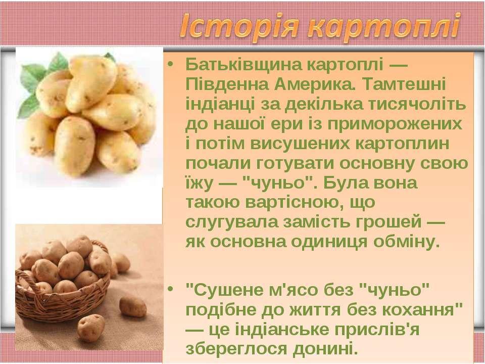 Батьківщина картоплі — Південна Америка. Тамтешні індіанці за декілька тисячо...