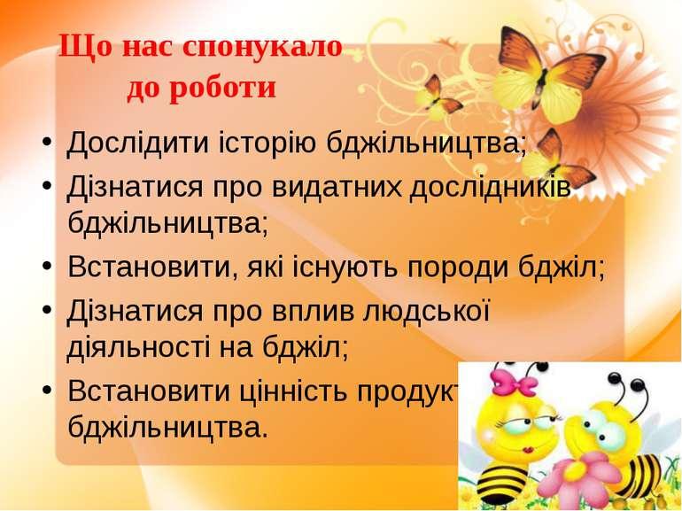 Що нас спонукало до роботи Дослідити історію бджільництва; Дізнатися про вида...
