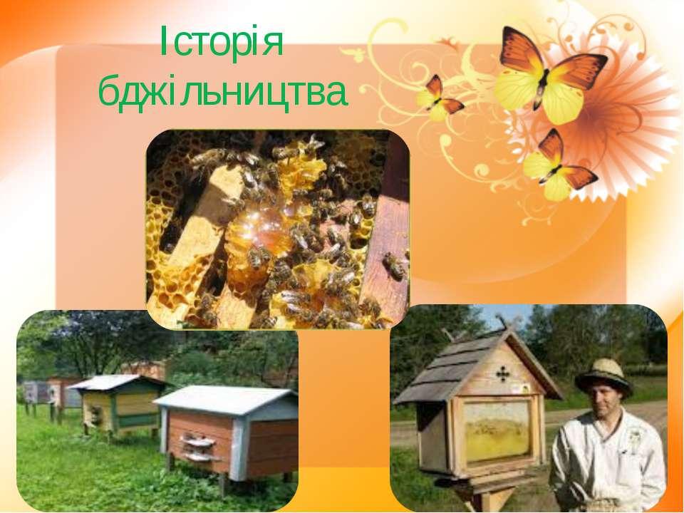 Історія бджільництва
