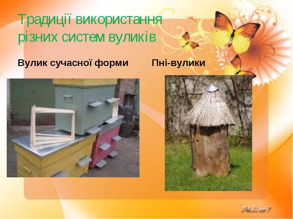 Традиції використання різних систем вуликів Вулик сучасної форми Пні-вулики