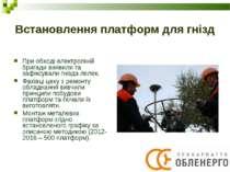Встановлення платформ для гнізд При обході електроліній бригади виявили та за...