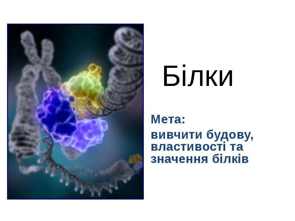 Білки Мета: вивчити будову, властивості та значення білків