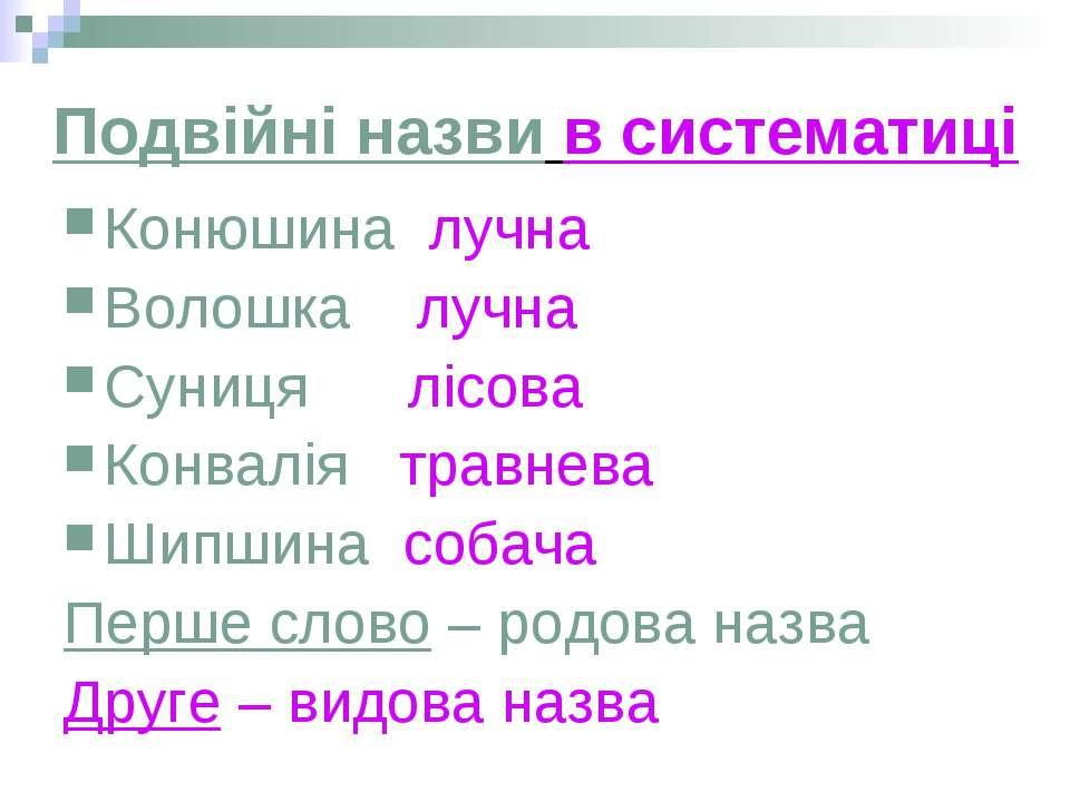 Подвійні назви в систематиці Конюшина лучна Волошка лучна Суниця лісова Конва...