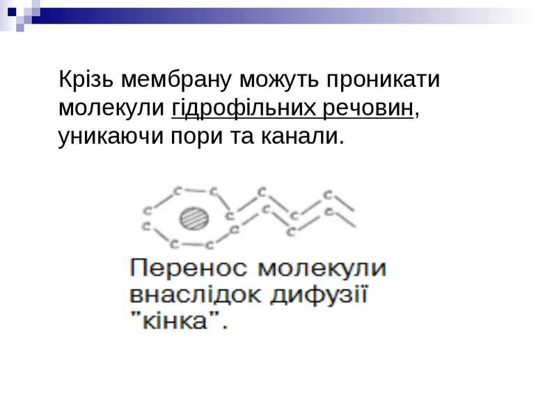 Крізь мембрану можуть проникати молекули гідрофільних речовин, уникаючи пори ...