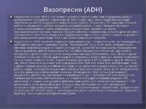 Вазопресин (ADH) Порушення синтезу ADH у гіпоталамусі зумовлює клінічні симпт...