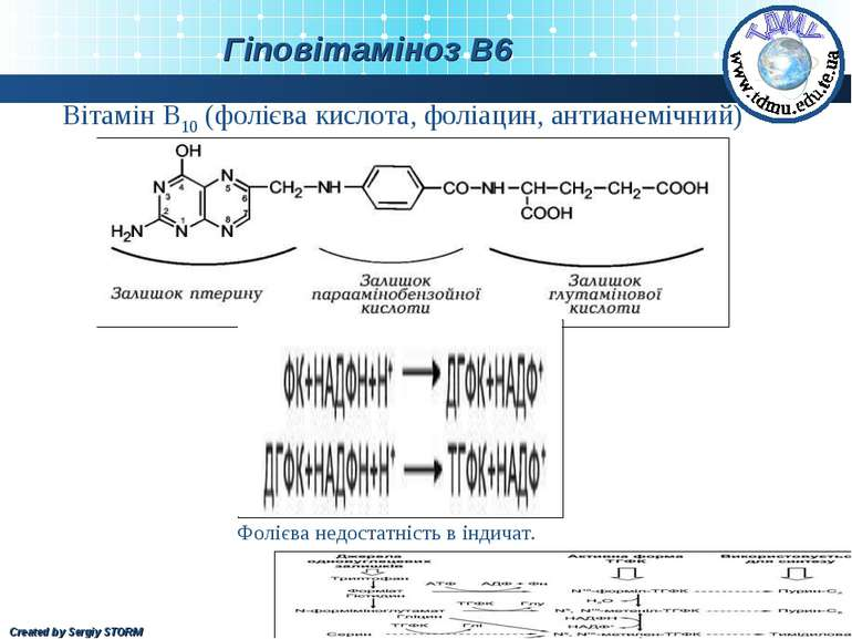 Вітамін В10 (фолієва кислота, фоліацин, антианемічний) Фолієва недостатність ...