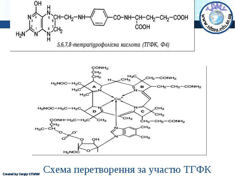 Схема перетворення за участю ТГФК Created by Sergiy STORM