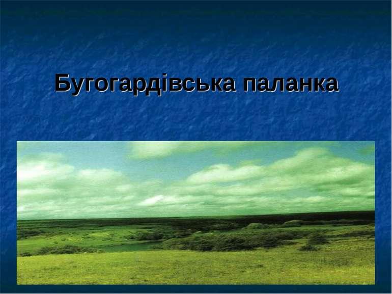 Бугогардівська паланка
