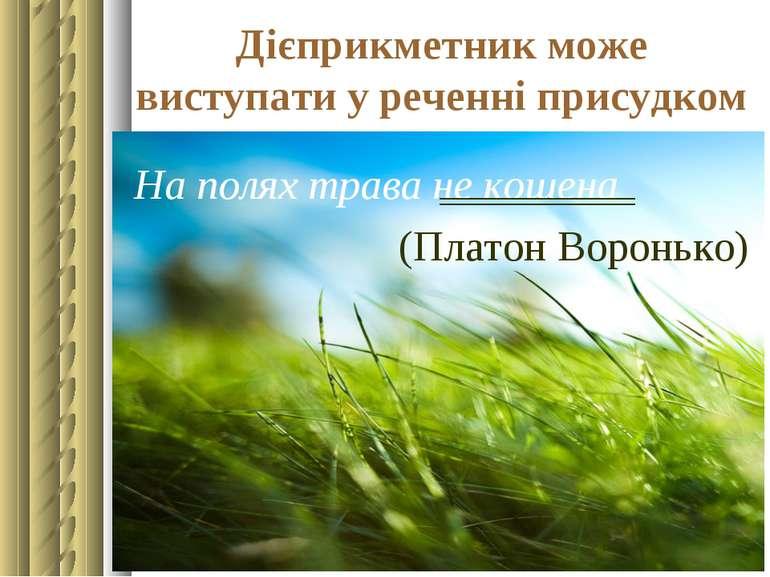 Дієприкметник може виступати у реченні присудком На полях трава не кошена (Пл...