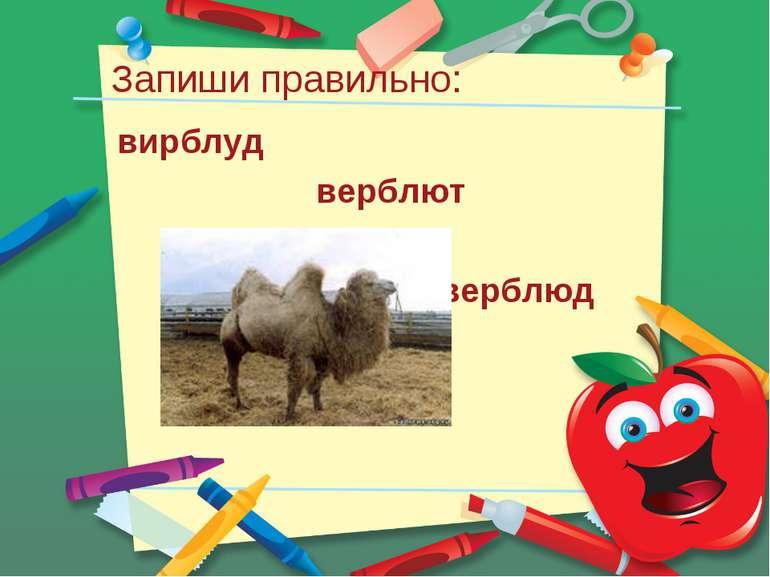 Запиши правильно: вирблуд верблют верблюд