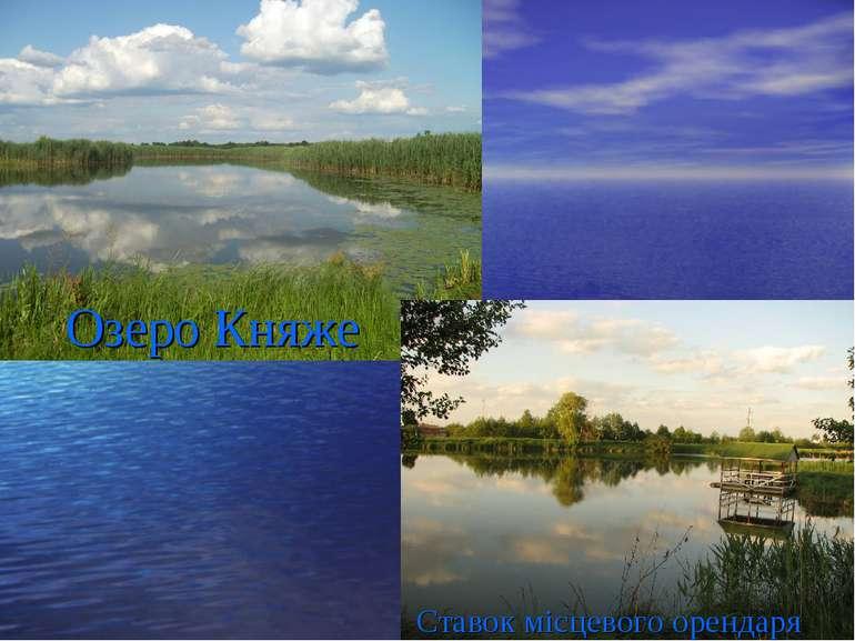 Озеро Княже Ставок місцевого орендаря
