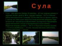 С у л а Сула - ліва притока Дніпра. Її довжина - 415 км, ширина річища в окре...