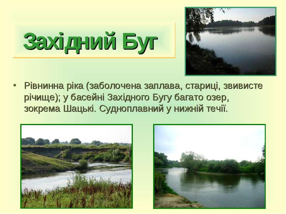 Західний Буг Рівнинна ріка (заболочена заплава, стариці, звивисте річище); у ...