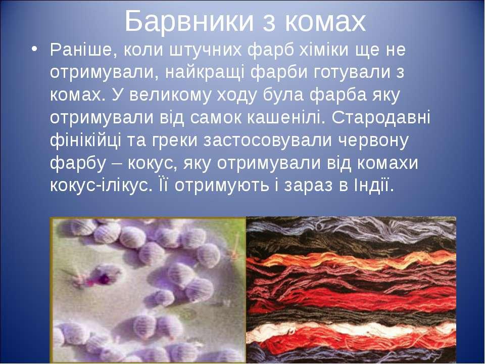 Барвники з комах Раніше, коли штучних фарб хіміки ще не отримували, найкращі ...