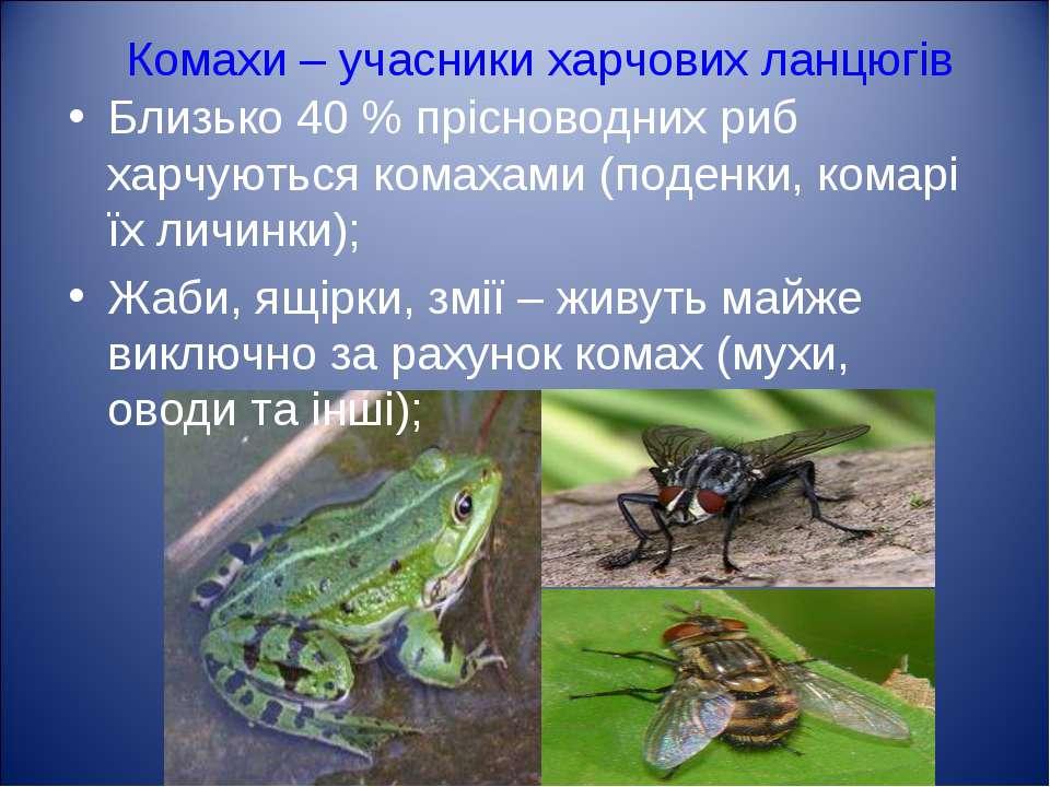 Комахи – учасники харчових ланцюгів Близько 40 % прісноводних риб харчуються ...