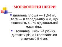 МОРФОЛОГІЯ ШКІРИ загальна площа — 1 ,5-2 м2, вага — в середньому 4 кг, що ста...