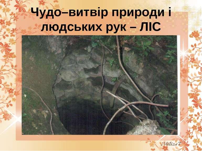 Чудо–витвір природи і людських рук – ЛІС