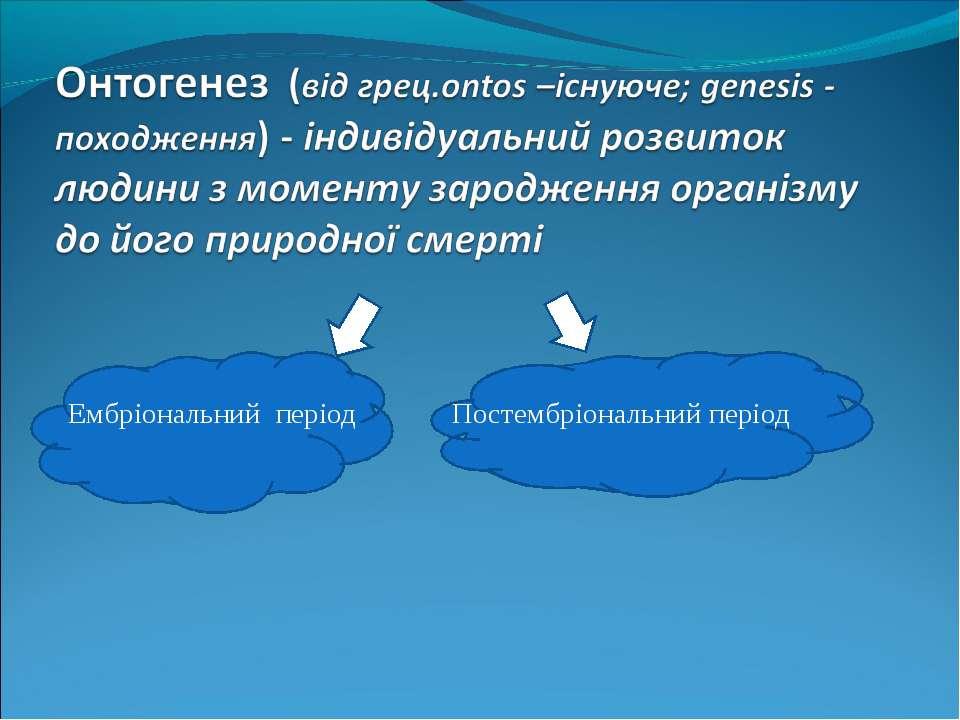 Ембріональний період Постембріональний період