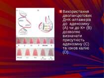 Використання дволанцюгових ДНК-аптамерiв до аденозину (А) чи до К+(В) дозвол...