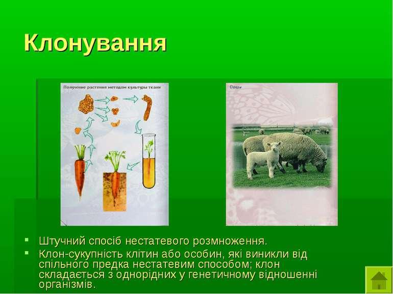 Клонування Штучний спосіб нестатевого розмноження. Клон-сукупність клітин або...