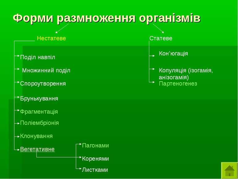 Форми размноження організмів Нестатеве Статеве Поділ навпіл Множинний поділ С...