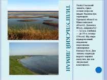 ТИЛІГУЛЬСКИЙ ЛИМАН Тилігу льський лима н, гірко-солоне озеро на півдні Україн...