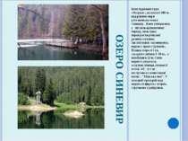 ОЗЕРО СИНЕВИР Біля підніжжя гори «Озерна» , на висоті 989 м. над рівнем моря ...