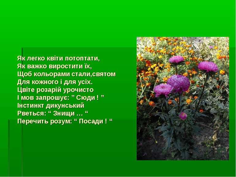 Як легко квіти потоптати, Як важко виростити їх, Щоб кольорами стали,святом Д...