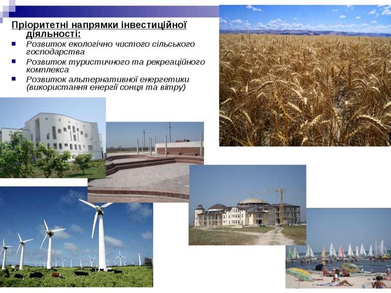 Пріоритетні напрямки інвестиційної діяльності: Розвиток екологічно чистого сі...