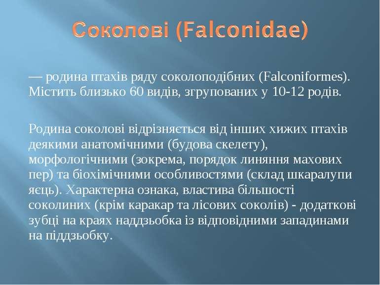 — родина птахів ряду соколоподібних (Falconiformes). Містить близько 60 видів...