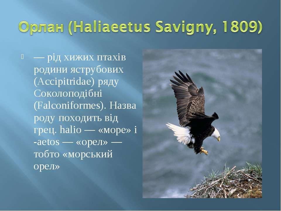 — рід хижих птахів родини яструбових (Accipitridae) ряду Соколоподібні (Falco...