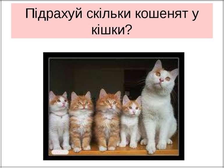 Підрахуй скільки кошенят у кішки?