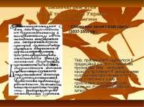 """Визначні пам'ятки історії та культури України Визначні писемні пам'ятки """"Слов..."""
