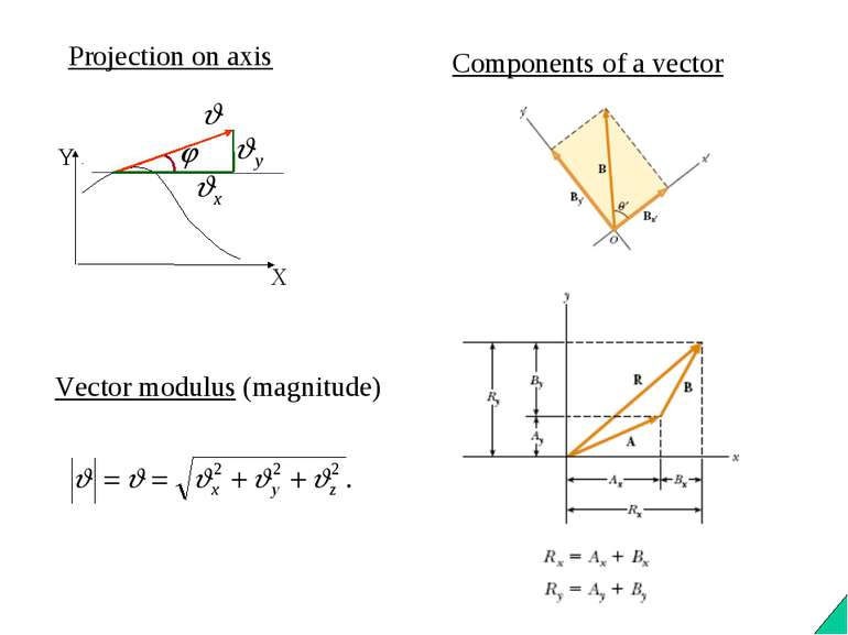 Projection on axis Vector modulus (magnitude) Components of a vector