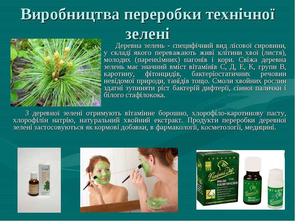 Виробництва переробки технічної зелені З деревної зелені отримують вітамінне ...