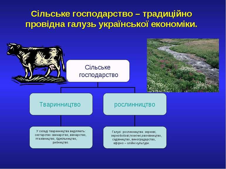 Сільське господарство – традиційно провідна галузь української економіки.
