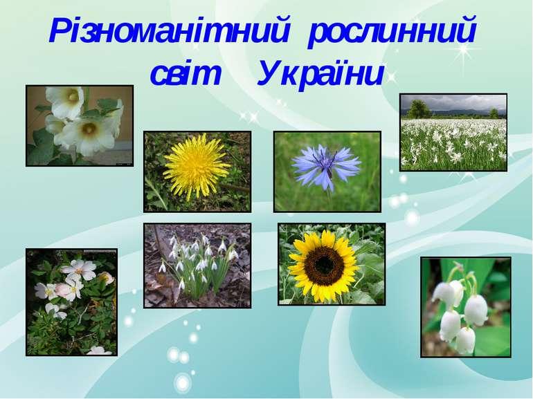 Різноманітний рослинний світ України