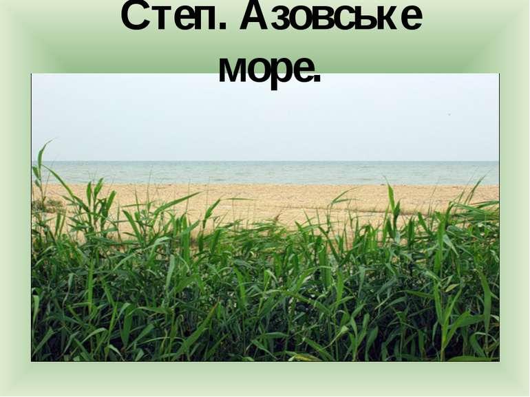 Степ. Азовське море.